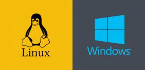 windows or linux hosting